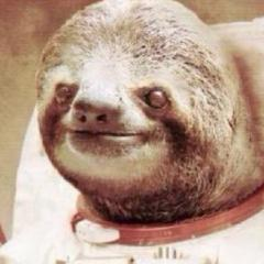 FromASloth
